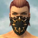 Ranger Sunspear Armor M gray head front.jpg