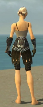 Warrior Silver Eagle Armor F gray arms legs back.jpg