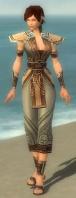 Monk Asuran Armor F gray front.jpg