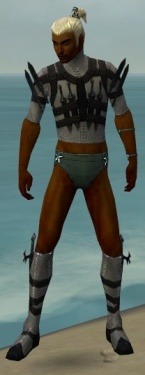 Assassin Obsidian Armor M gray chest feet front.jpg