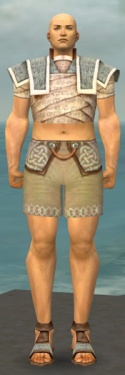 Monk Woven Armor M gray chest feet front.jpg