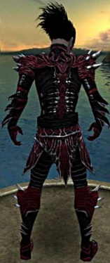 Necromancer Luxon Armor M gray chest feet back.jpg