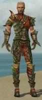 Ranger Elite Drakescale Armor M gray front.jpg