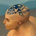 Monk Istani Armor M dyed head side.jpg