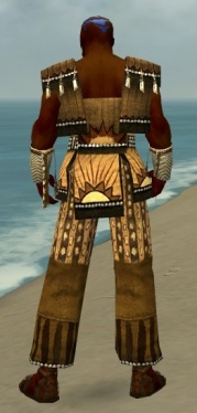 Monk Sunspear Armor M dyed back.jpg
