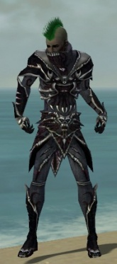 Necromancer Elite Necrotic Armor M dyed front.jpg
