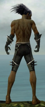 Necromancer Kurzick Armor M gray arms legs back.jpg
