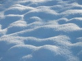 Field-with-snow-champ-enneige.jpg