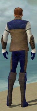 Mesmer Enchanter Armor M dyed back.jpg