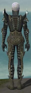 Necromancer Profane Armor M gray back.jpg