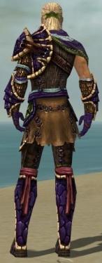Ranger Luxon Armor M dyed back.jpg