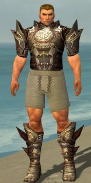 Warrior Monument Armor M gray chest feet front.jpg