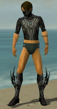 Assassin Vabbian Armor M gray chest feet front.jpg