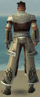 Monk Deldrimor Armor M gray back.jpg