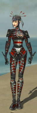 Necromancer Necrotic Armor F dyed front.jpg