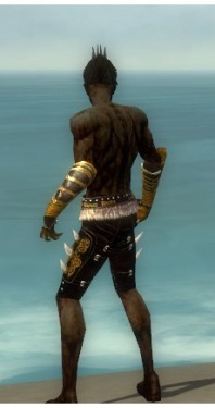 Necromancer Norn Armor M gray arms legs back.jpg