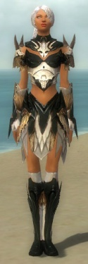 Paragon Norn Armor F dyed front.jpg