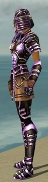 Warrior Ancient Armor F dyed side.jpg