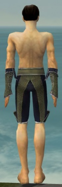 Elementalist Canthan Armor M gray arms legs back.jpg