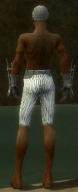 Elementalist Primeval Armor M gray arms legs back.jpg
