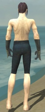 Elementalist Tyrian Armor M gray arms legs back.jpg