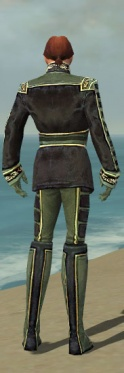 Mesmer Canthan Armor M gray back.jpg
