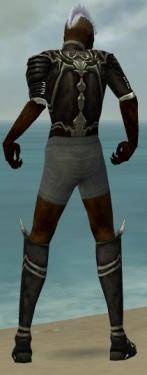 Necromancer Shing Jea Armor M gray chest feet back.jpg
