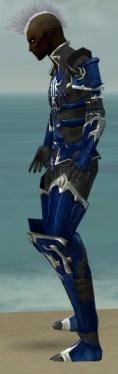 Necromancer Tyrian Armor M dyed side.jpg