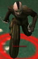 Kurzick Assassin.jpg