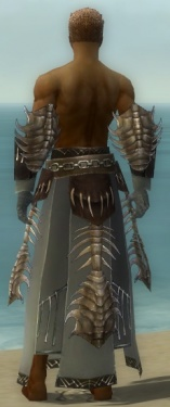 Dervish Primeval Armor M gray arms legs back.jpg