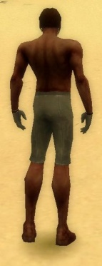 Mesmer Norn Armor M gray arms legs back.jpg