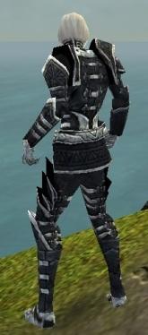 Necromancer Elite Cultist Armor M dyed back.jpg