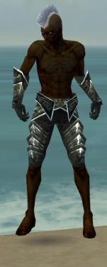 Necromancer Fanatic Armor M gray arms legs front.jpg