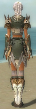 Paragon Norn Armor F gray back.jpg