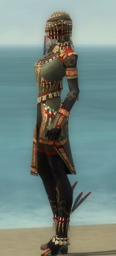 Ritualist Elite Canthan Armor F gray side.jpg