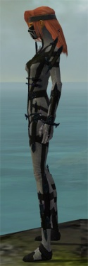 Assassin Obsidian Armor F gray side.jpg