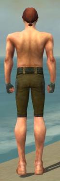 Mesmer Ascalon Armor M gray arms legs back.jpg