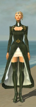 Mesmer Courtly Armor F gray chest feet front.jpg