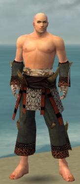 Monk Primeval Armor M gray arms legs front.jpg