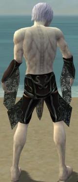 Necromancer Vabbian Armor M gray arms legs back.jpg