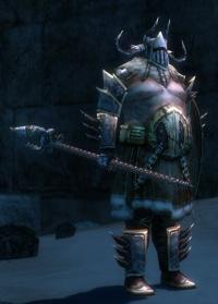 Norn Guard Captain.jpg