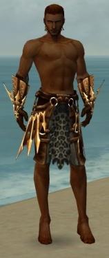 Ranger Elite Sunspear Armor M gray arms legs front.jpg