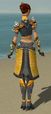 Elementalist Elite Stoneforged Armor F dyed back.jpg