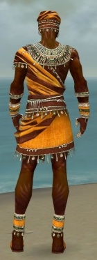 Ritualist Exotic Armor M dyed back.jpg