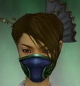 Assassin Norn Armor F dyed head front.jpg
