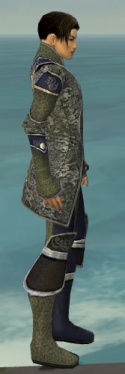 Elementalist Canthan Armor M gray side.jpg
