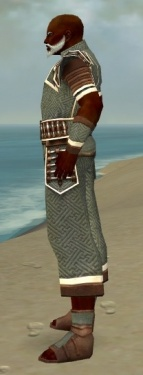 Monk Elite Judge Armor M gray side.jpg