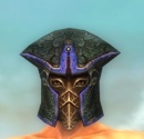 Warrior Luxon Armor M dyed head front.jpg