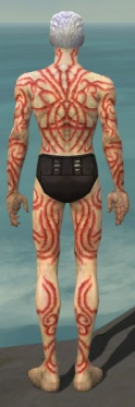 Necromancer Scar Pattern Armor M dyed back.jpg