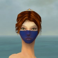 Norn Woad F dyed front.jpg